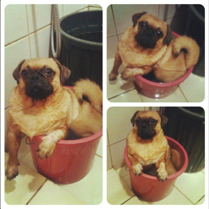 Richard in a bucket