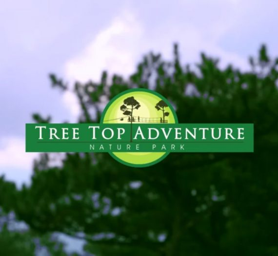 ​Theme Parks in the Philippines: Tree Top Adventure Baguio